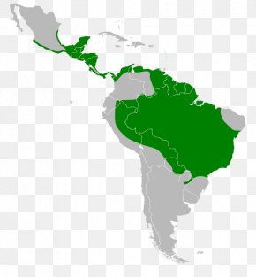 United States - Latin America South America United States Region Geography PNG