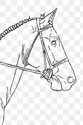 Horse Drawing - Line Art Horse Drawing Pony Equestrian PNG