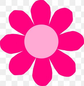 Hawaii Flower - Flower Spring Clip Art PNG