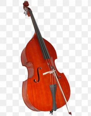 Bass Guitar - Double Bass Bass Guitar Viola Violin Family String Instruments PNG