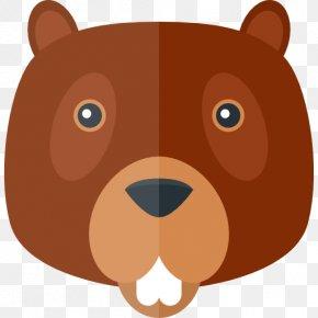 Beaver - Beaver Animal PNG