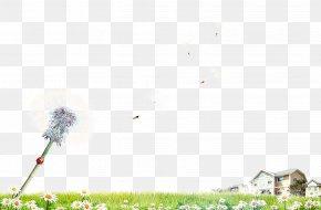 Dandelion And Houses - Dandelion Google Images Wallpaper PNG