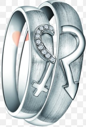 Silver Ring Pro Companion Element - Ring Silver Platinum PNG