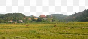 Vietnam Park - Nha Trang Park Ruins Monument PNG