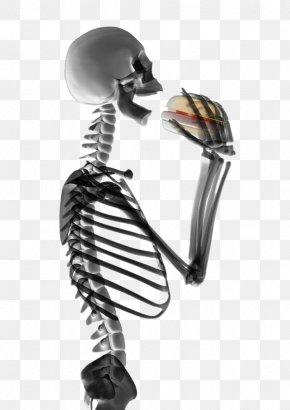 HD Hamburgers Skeleton Figures - Hamburger Human Skeleton Eating Stock Photography PNG