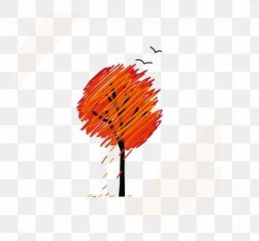 Vector Autumn Tree - Autumn Graphic Design Clip Art PNG