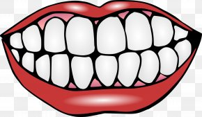 Teeth - Human Tooth Mouth Lip Clip Art PNG