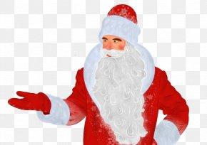 Santa Claus - Ded Moroz Santa Claus Christmas Ornament Snegurochka Grandfather PNG