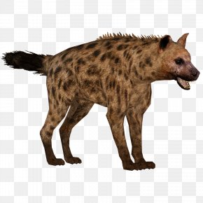Hyena - Spotted Hyena Icon Clip Art PNG