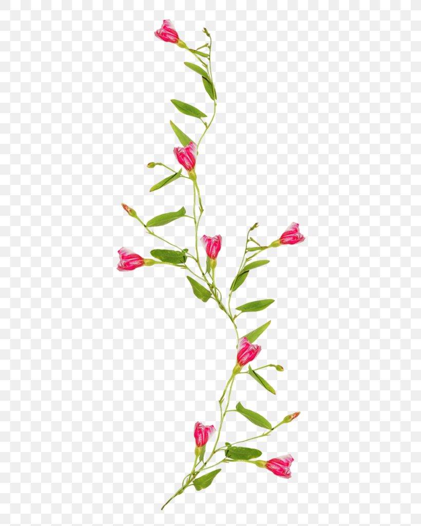 Fl Design Flower Vine Drawing Clip