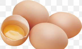 Egg - Chicken Egg Yolk PNG