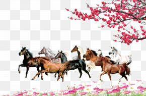 Flowers Horse Free Material Download - Horse Download Computer File PNG
