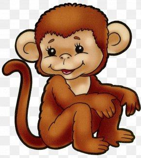 Orangutan - Cartoon Drawing Film Illustrator Clip Art PNG