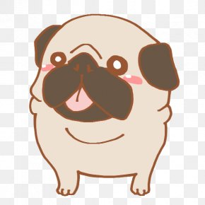 Puppy - Pug Dog Breed Puppy Non-sporting Group Rikuo PNG