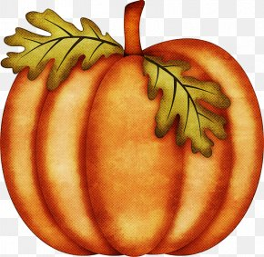 Food Autumn - Orange PNG