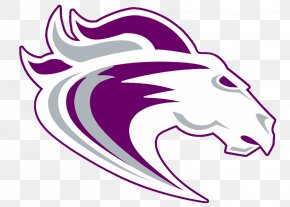 Lacrosse - Ridge View High School Columbia National Secondary School PNG