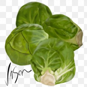 Brussels Sprout Vegetarian Cuisine Collard Greens Capitata Group Spring Greens PNG