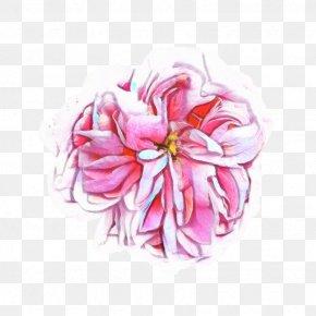 Plant Pink - Pink Flower Cartoon PNG