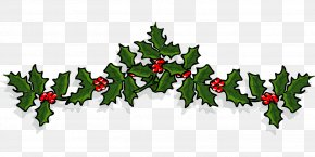 Holli Banner - Common Holly Clip Art Vector Graphics American Holly PNG