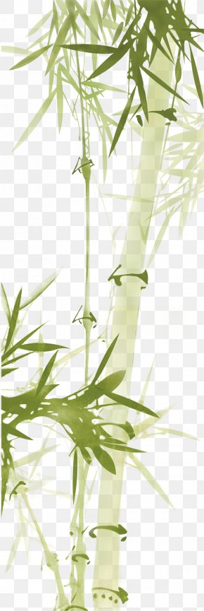 Green Bamboo - Bamboo Download Paper Computer File PNG