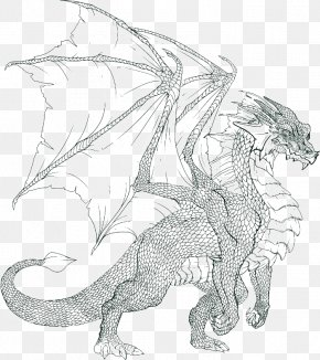 Dragon - Coloring Book Dragon Colouring Pages Child Adult PNG
