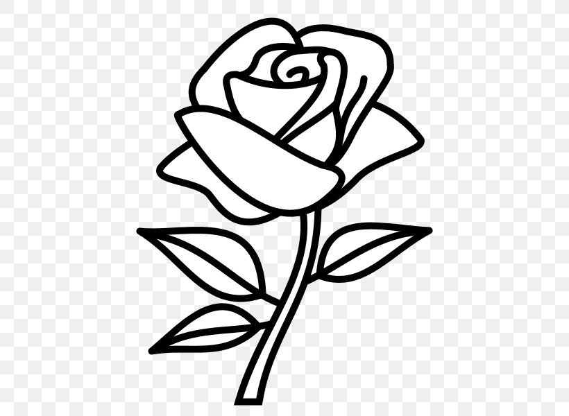 Drawing Rose Flower Sketch Png 600x600px Drawing Art Artwork Black Black And White Download Free