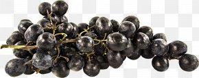 A Bunch Of Grapes - Grape Juice Common Grape Vine Fruit PNG