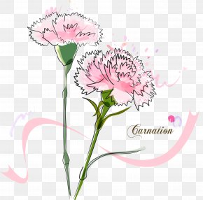 Bouquet Of Carnation - Madonna Of The Carnation Vector Graphics Image PNG