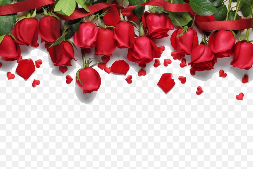 Love Song Romance Royalty Free Png 1000x667px Rose Floral