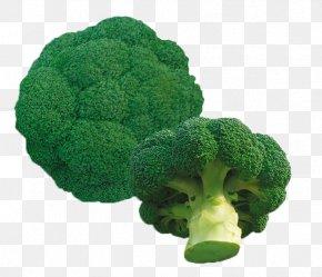 Fresh And Healthy Broccoli - Organic Food Seed Vegetable Broccoli Okra PNG