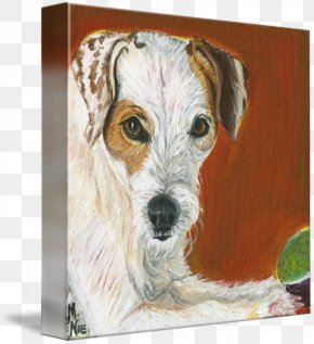 Jack Russell - Wire Hair Fox Terrier Jack Russell Terrier Dog Breed Companion Dog PNG