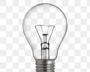 Daily Light Bulbs - Incandescent Light Bulb Lighting Lamp Electric Light PNG
