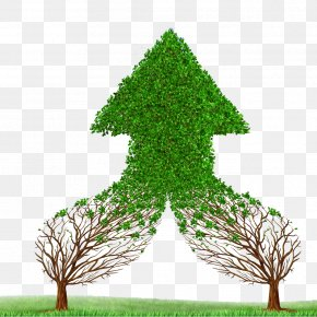 Beautiful Green Material - Management Accounting Management Accounting Business Mergers And Acquisitions PNG