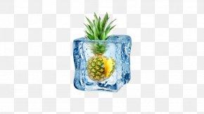 Pineapple Ice - Ice Cream Fruit Salad Ice Cube PNG