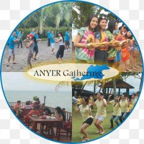 Beach - Beach Tourism Amusement Park Tourist Attraction Nuansa Bali PNG