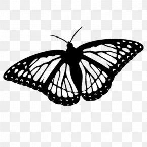 Papillon Movie Review - Monarch Butterfly Coloring Book Clip Art Drawing PNG
