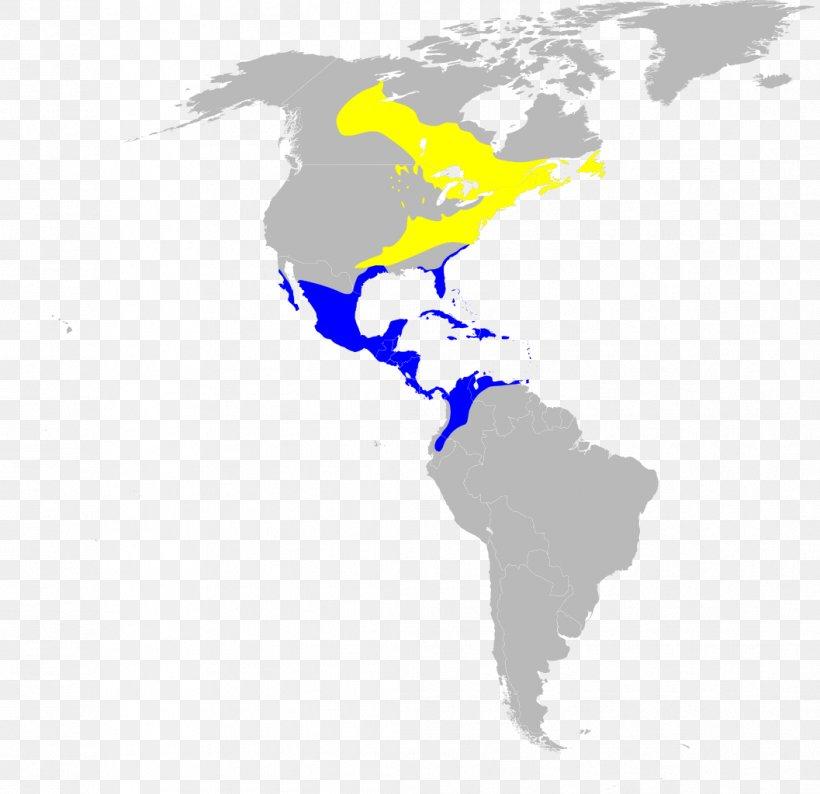United States Latin America World Map World Map, PNG ...