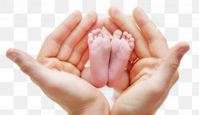 Child's Hand Holding The Foot - Foot Neonate Infant Hand Mother PNG