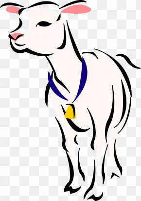 Camel - Boer Goat Sheep Lamb And Mutton Clip Art PNG
