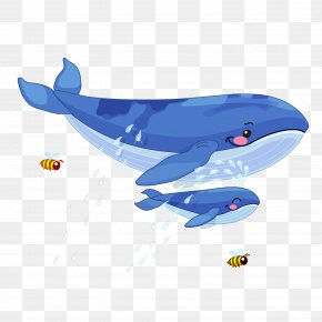 Big Whale And Little Whale - Whale Animal Illustration PNG