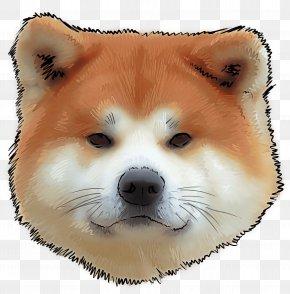 Spitz Dog Breed - Dog Shiba Inu Akita Akita Inu Dog Breed PNG