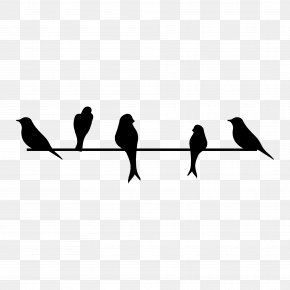 Birds Silhouette - Bird Wall Decal Sticker PNG
