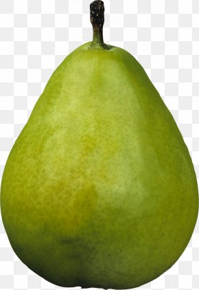 Green Pear Image - Asian Pear Williams Pear Clip Art PNG