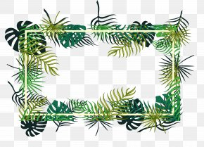 Tropical Leaf Decoration Box - Fir Christmas Ornament Pine Spruce Evergreen PNG