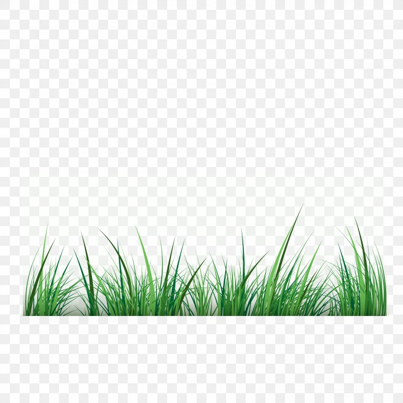 green clip art png 3125x3125px green blue diagram drawing grass download free green clip art png 3125x3125px green