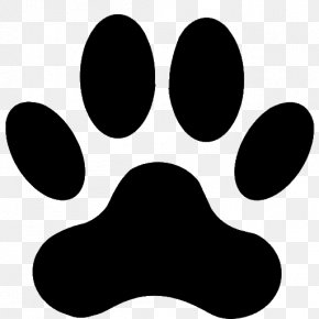 Bolonka Zwetna - Dog Cat Paw Clip Art PNG