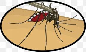 Mosquito Clip Art Zika Virus - Mosquito Insect Clip Art Zika Virus Zika Fever PNG