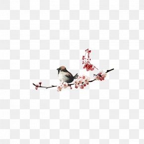 Plum Magpie - New Years Day Lunar New Year Typography PNG