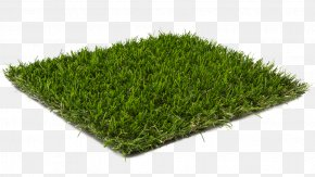 Ink Bamboo Material - Lawn Artificial Turf Floor Garden Carpet PNG