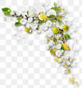 Flower - Picture Frames Flower Bouquet Clip Art PNG